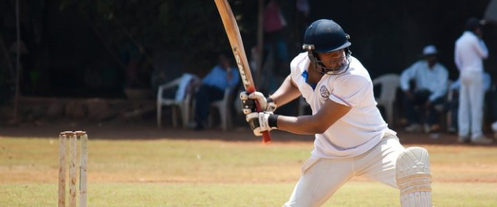 Apparao Mukkamala Looks at the New Fantasy Cricket Craze