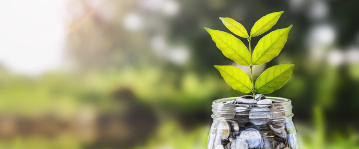 How to Choose The Right Investment Fund For You