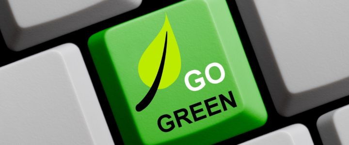 5 Tips for Going Green and Making a Difference in the World