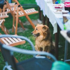 5 Ways to Furnish Your Outdoor Event