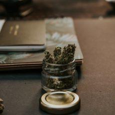 CBD Edibles – A Popular Way To Take Medical Marijuana