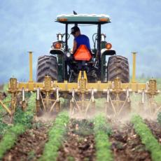 Transitioning Your Farm to the Next Generation is Easy