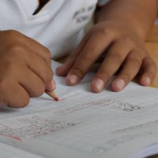 Choosing the Best Education for Your Child