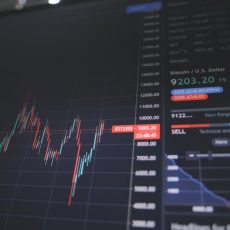5 Golden Rules for Beginner Investors in the Stock Market